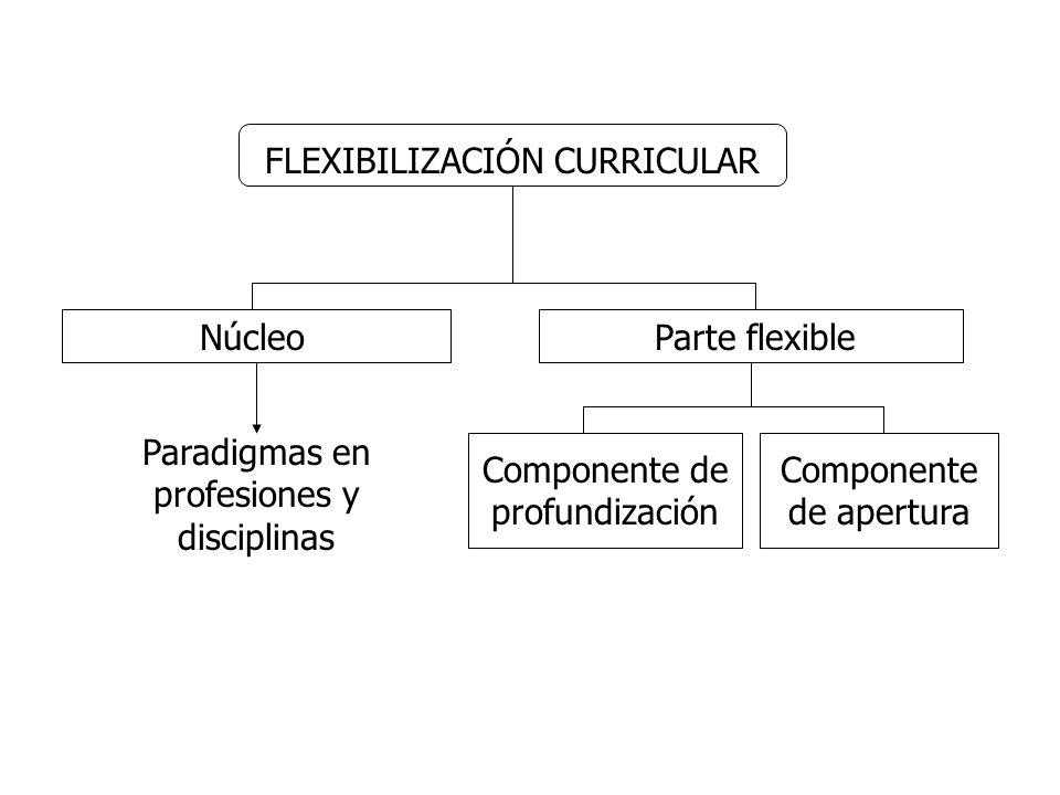 FLEXIBILIZACIÓN CURRICULAR NúcleoParte flexible Componente de profundización Componente de apertura Paradigmas en profesiones y disciplinas