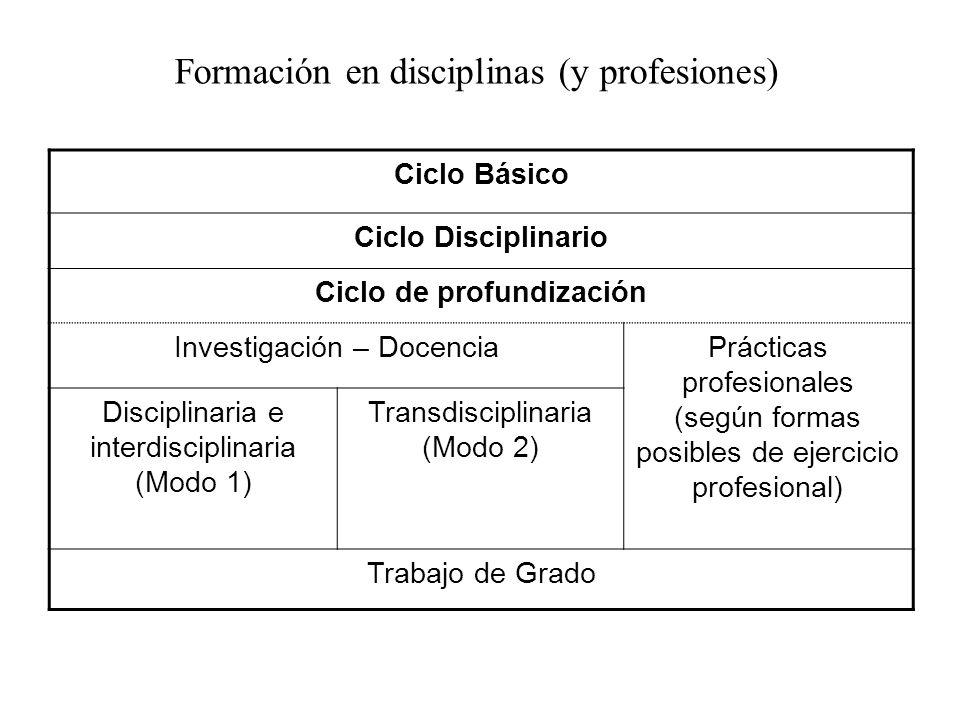 Ciclo Básico Ciclo Disciplinario Ciclo de profundización Investigación – DocenciaPrácticas profesionales (según formas posibles de ejercicio profesion