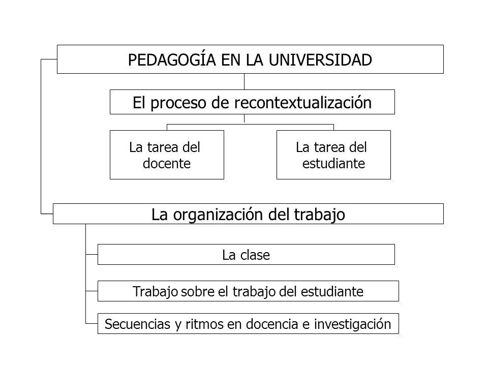 PEDAGOGÍA EN LA UNIVERSIDAD El proceso de recontextualización La tarea del docente La tarea del estudiante La organización del trabajo La clase Trabaj