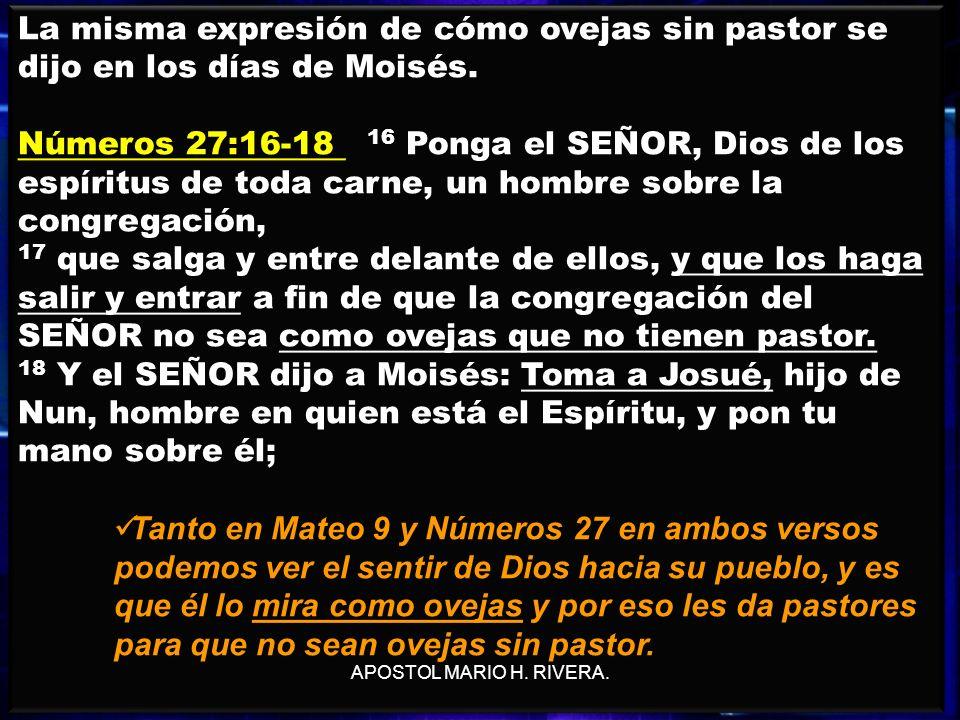 25 La misma expresión de cómo ovejas sin pastor se dijo en los días de Moisés. Números 27:16-18 16 Ponga el SEÑOR, Dios de los espíritus de toda carne