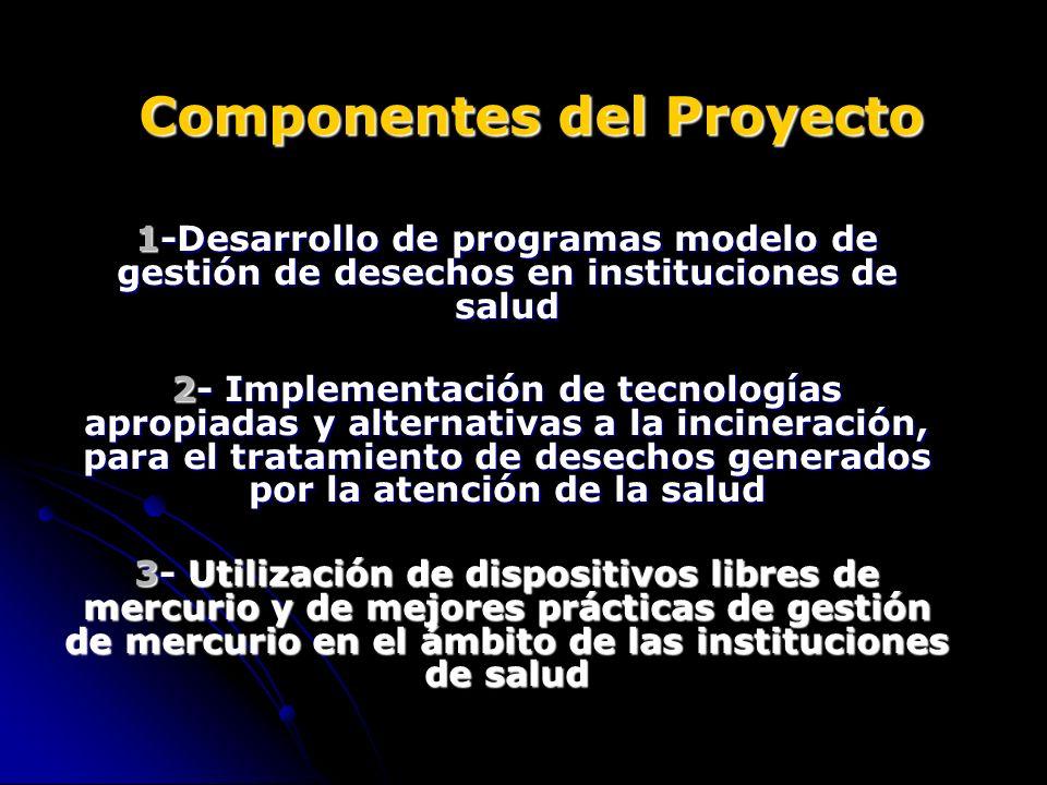 Componentes del Proyecto 1-Desarrollo de programas modelo de gestión de desechos en instituciones de salud 2- Implementación de tecnologías apropiadas