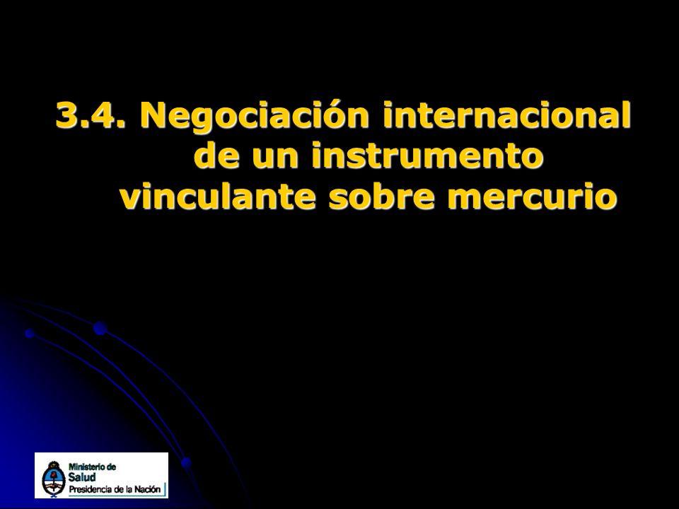 3.4. Negociación internacional de un instrumento vinculante sobre mercurio