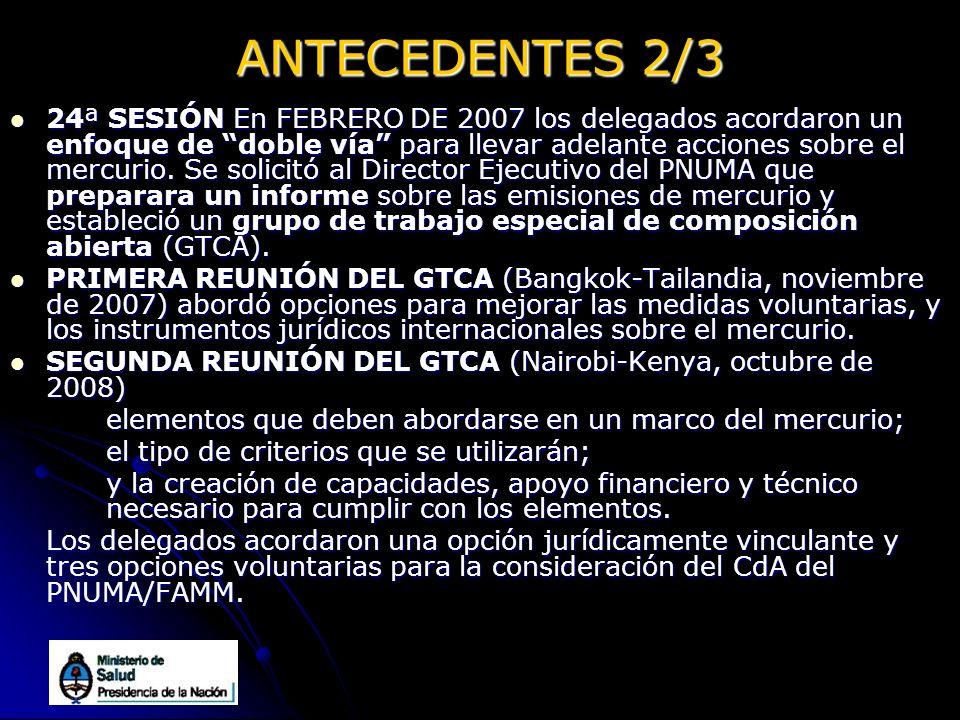 ANTECEDENTES 2/3 24ª SESIÓN En FEBRERO DE 2007 los delegados acordaron un enfoque de doble vía para llevar adelante acciones sobre el mercurio. Se sol