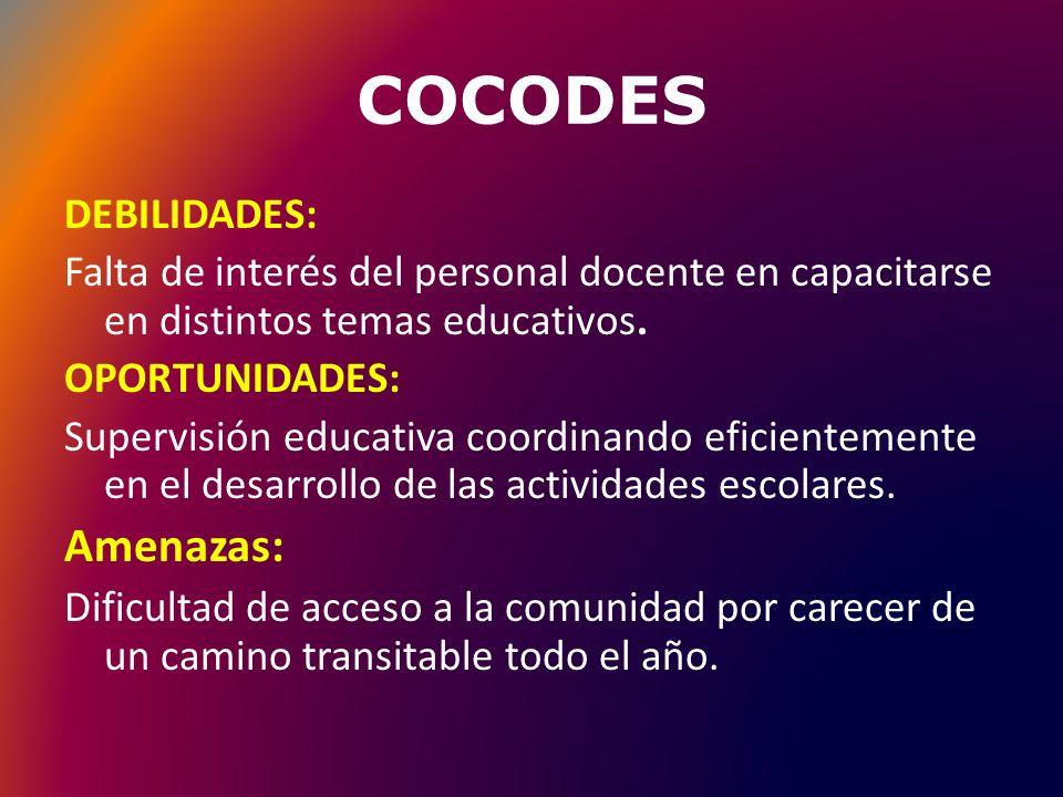COCODES OPORTUNIDADES: Son los hechos, eventos y actividades que pueden contribuir a la realización de un plan.