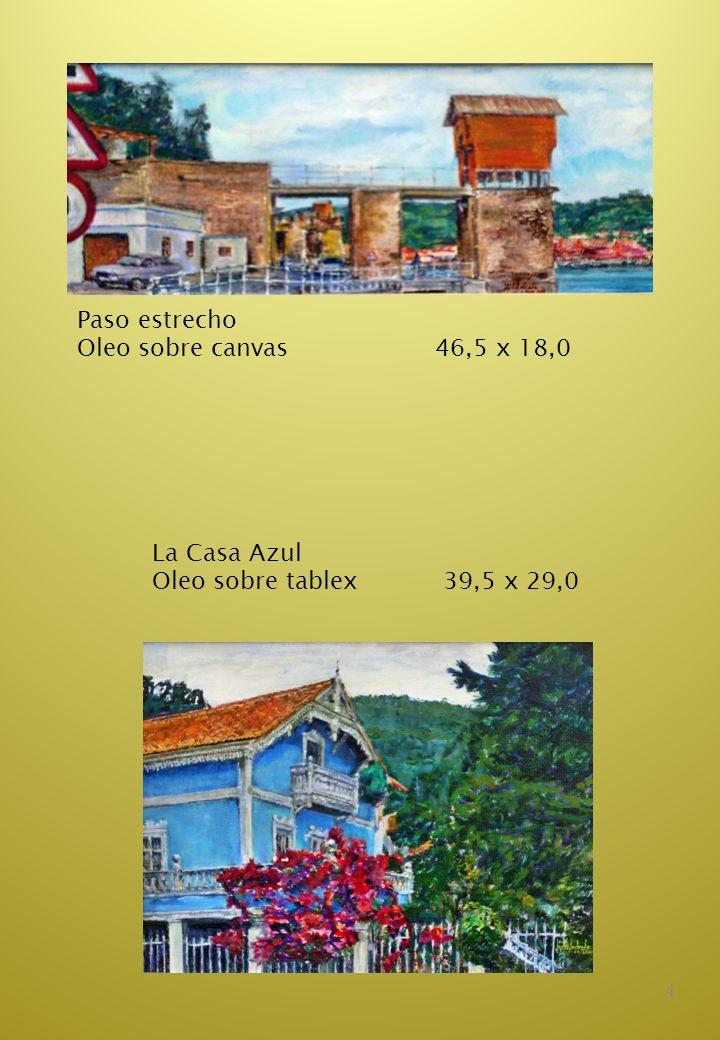 15 El pozo de las macetas Acuarela 22.0 x 30,0 La Ventana del patio Acuarela 22,0 x 30,0