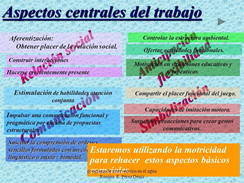12 Simbolización Anticipación flexibilidad flexibilidad Comunicación Relación social I mpulsar una comunicación funcional y pragmática por encima de p