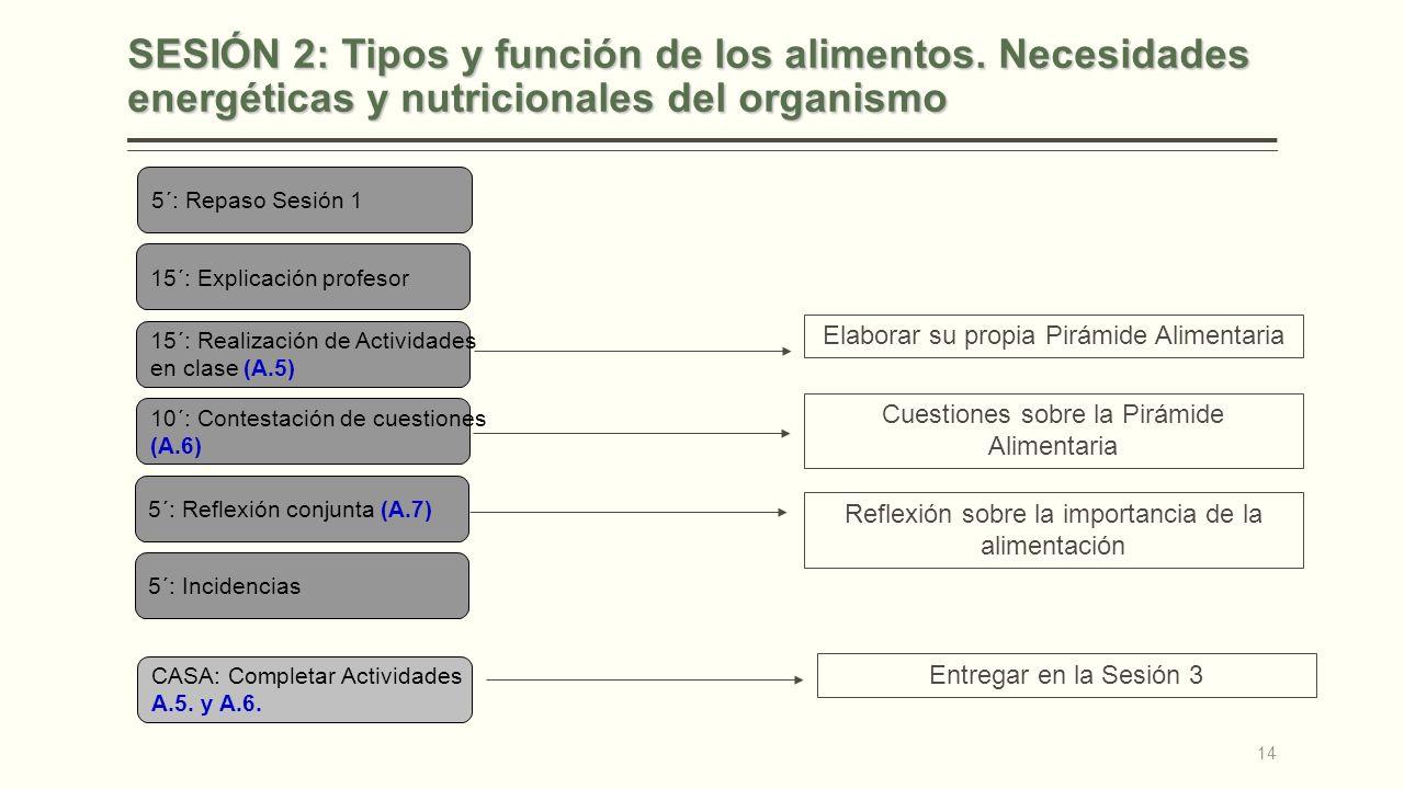 SESIÓN 2: Tipos y función de los alimentos. Necesidades energéticas y nutricionales del organismo 5´: Repaso Sesión 1 15´: Explicación profesor 15´: R