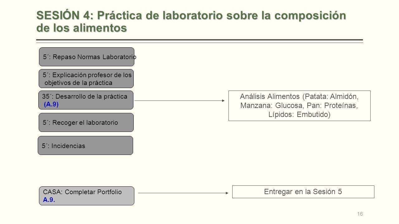 SESIÓN 4: Práctica de laboratorio sobre la composición de los alimentos 5´: Repaso Normas Laboratorio 5´: Explicación profesor de los objetivos de la práctica 35´: Desarrollo de la práctica (A.9) 5´: Recoger el laboratorio 5´: Incidencias CASA: Completar Portfolio A.9.