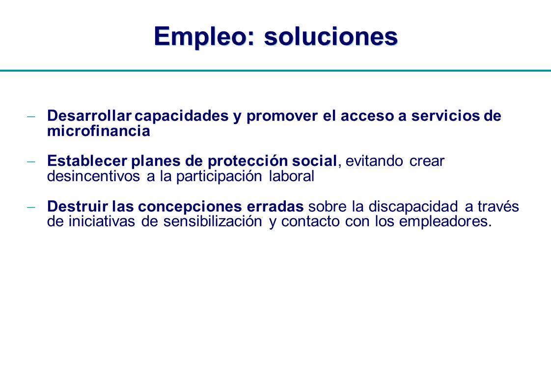 | Empleo: soluciones Desarrollar capacidades y promover el acceso a servicios de microfinancia Establecer planes de protección social, evitando crear