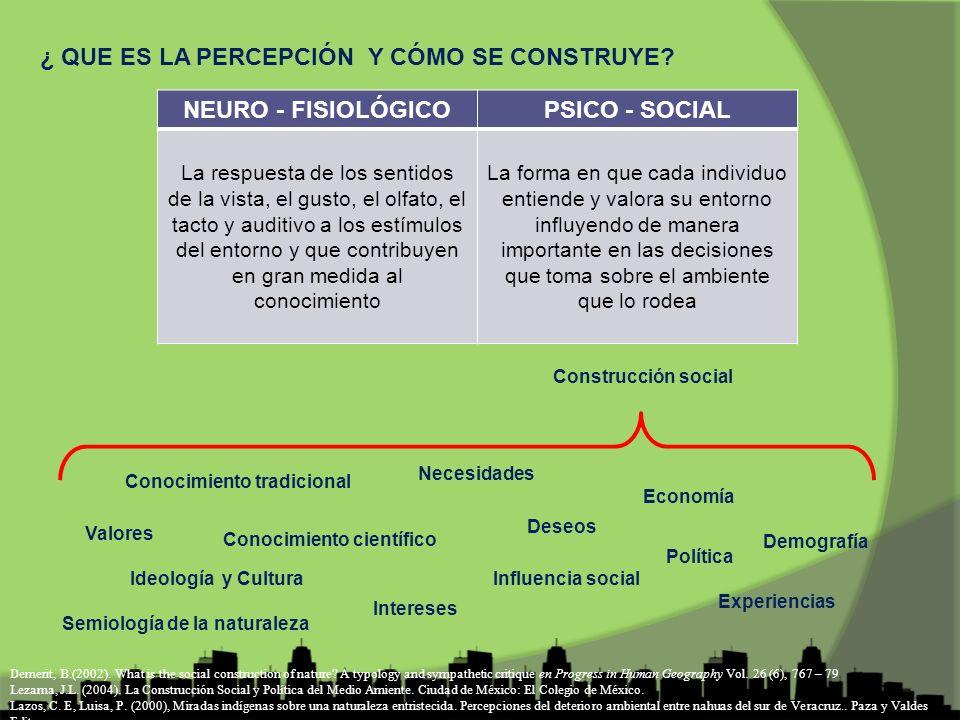 ¿QUÉ ES LA CONSTRUCCIÓN SOCIAL DE LOS PROBLEMAS AMBIENTALES.