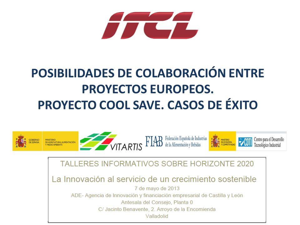 TALLERES INFORMATIVOS SOBRE HORIZONTE 2020 Valladolid 07/05/2013 POSIBILIDADES DE COLABORACIÓN ENTRE PROYECTOS EUROPEOS.