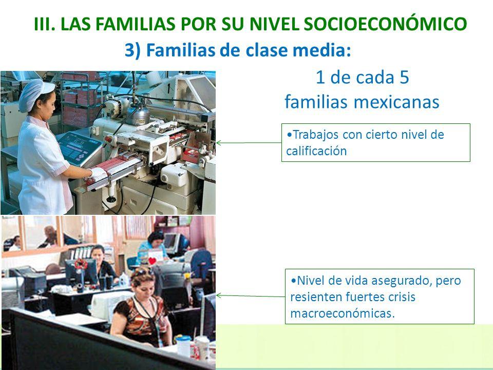 III. LAS FAMILIAS POR SU NIVEL SOCIOECONÓMICO Trabajos con cierto nivel de calificación 1 de cada 5 familias mexicanas 3) Familias de clase media: Niv