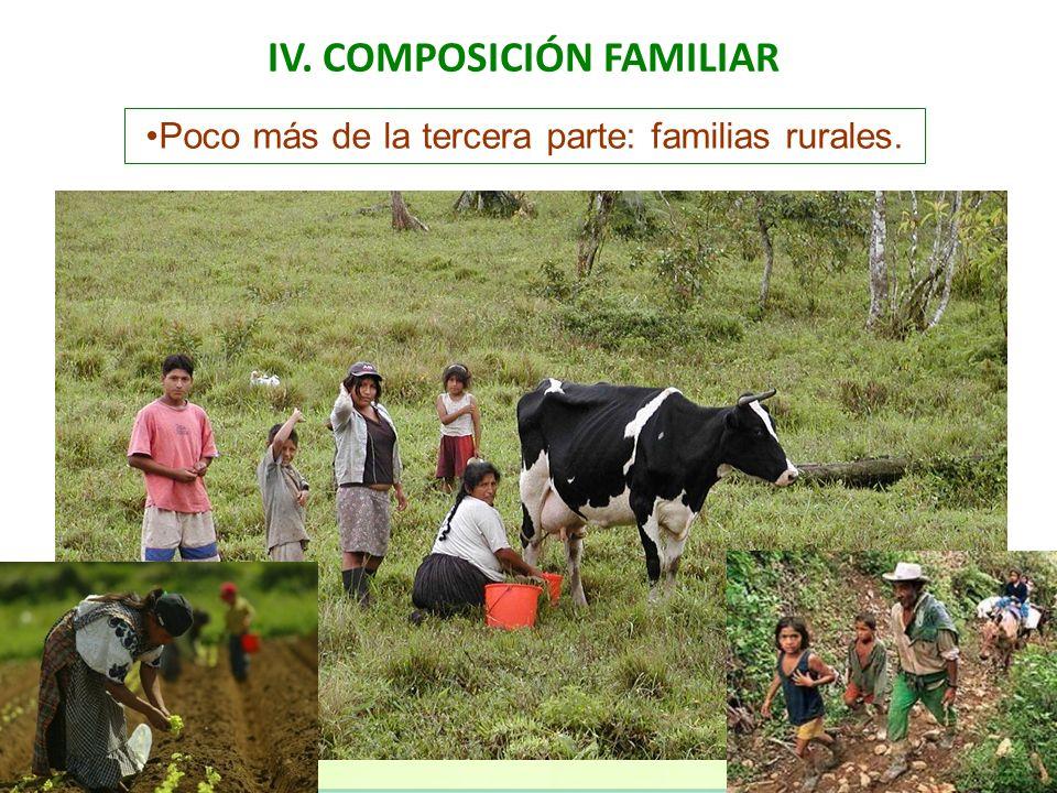 IV. COMPOSICIÓN FAMILIAR Poco más de la tercera parte: familias rurales.