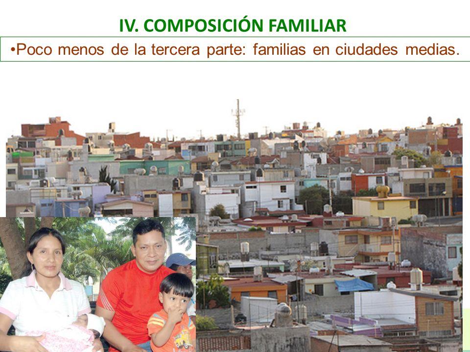 IV. COMPOSICIÓN FAMILIAR Poco menos de la tercera parte: familias en ciudades medias.