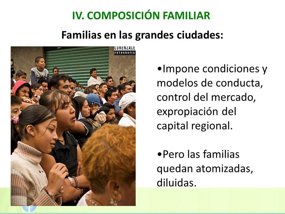 IV. COMPOSICIÓN FAMILIAR Familias en las grandes ciudades: Impone condiciones y modelos de conducta, control del mercado, expropiación del capital reg