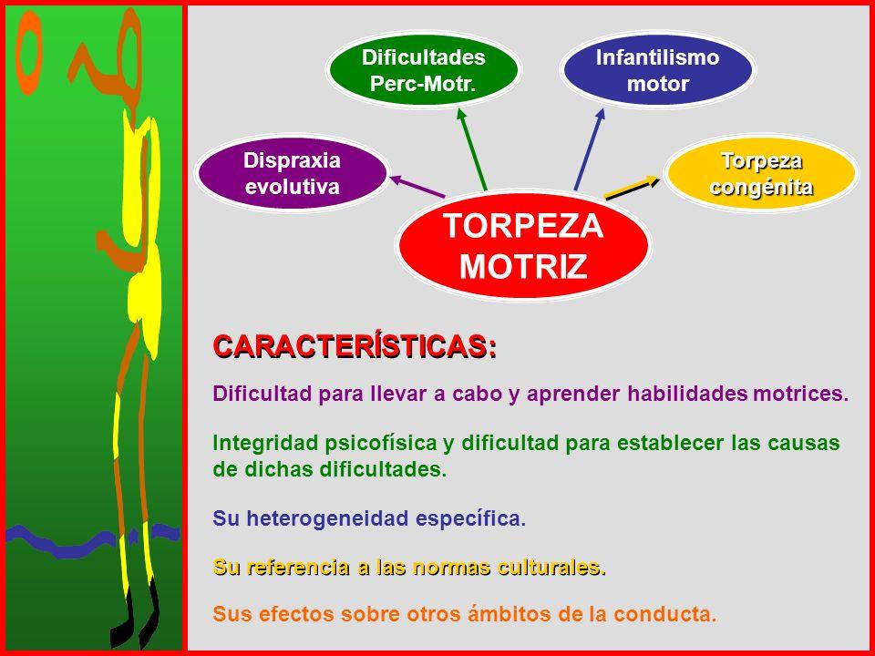 TORPEZA MOTRIZ Dispraxia evolutiva Dificultades Perc-Motr. Infantilismo motor Torpezacongénita CARACTERÍSTICAS: Dificultad para llevar a cabo y aprend