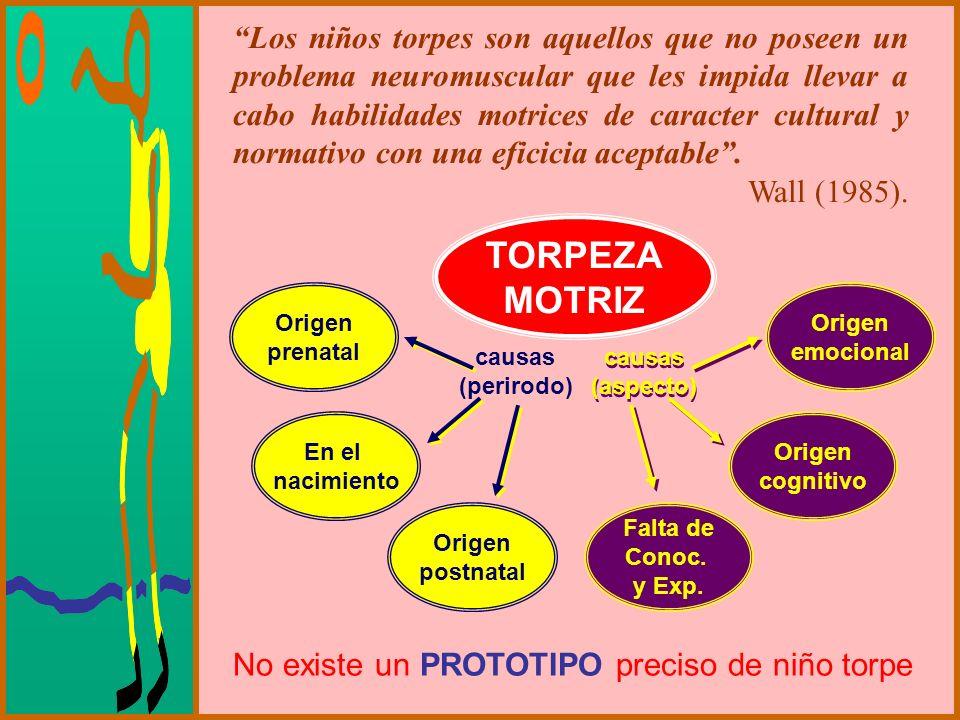 Los niños torpes son aquellos que no poseen un problema neuromuscular que les impida llevar a cabo habilidades motrices de caracter cultural y normati