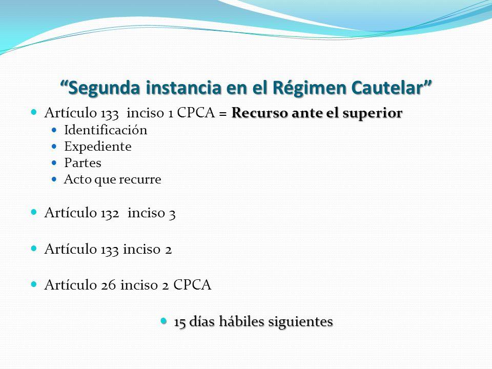 Segunda instancia en el Régimen Cautelar Recurso ante el superior Artículo 133 inciso 1 CPCA = Recurso ante el superior Identificación Expediente Part