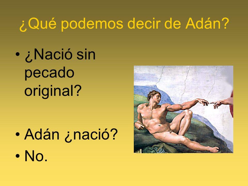¿Qué podemos decir de Adán? ¿Nació sin pecado original? Adán ¿nació? No.