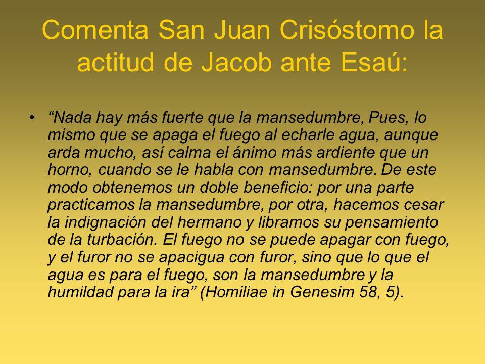 Comenta San Juan Crisóstomo la actitud de Jacob ante Esaú: Nada hay más fuerte que la mansedumbre, Pues, lo mismo que se apaga el fuego al echarle agu