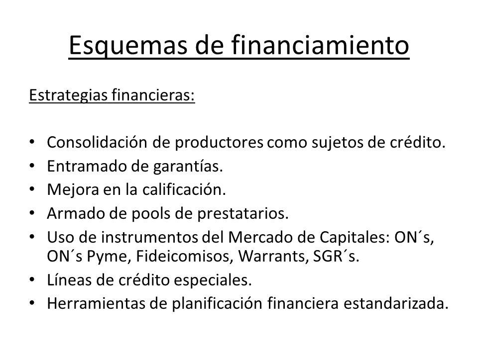 Esquemas de financiamiento Estrategias financieras: Consolidación de productores como sujetos de crédito.