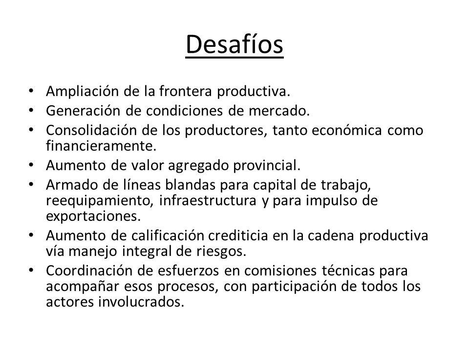 Desafíos Ampliación de la frontera productiva. Generación de condiciones de mercado.