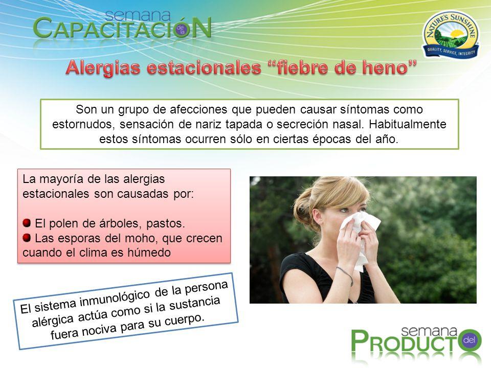 Son un grupo de afecciones que pueden causar síntomas como estornudos, sensación de nariz tapada o secreción nasal. Habitualmente estos síntomas ocurr