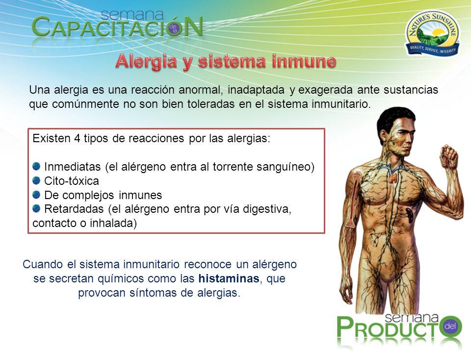 Una alergia es una reacción anormal, inadaptada y exagerada ante sustancias que comúnmente no son bien toleradas en el sistema inmunitario. Existen 4