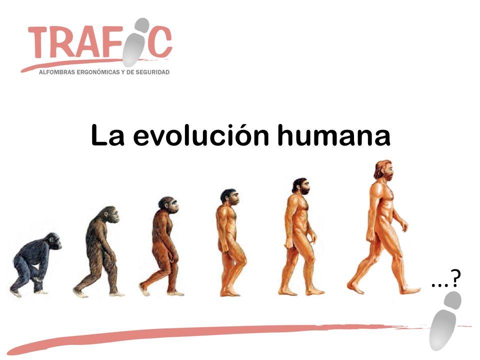 La evolución humana...?
