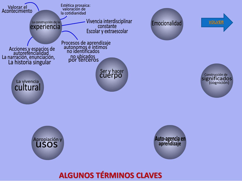 ALGUNOS TÉRMINOS CLAVES VOLVER