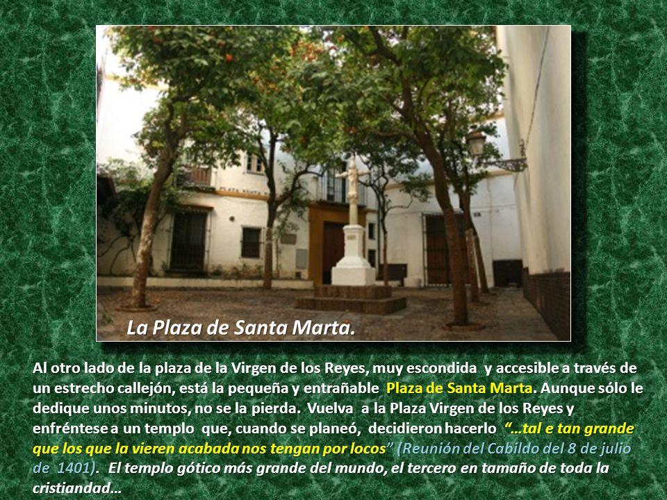 Al otro lado de la plaza de la Virgen de los Reyes, muy escondida y accesible a través de un estrecho callejón, está la pequeña y entrañable Plaza de