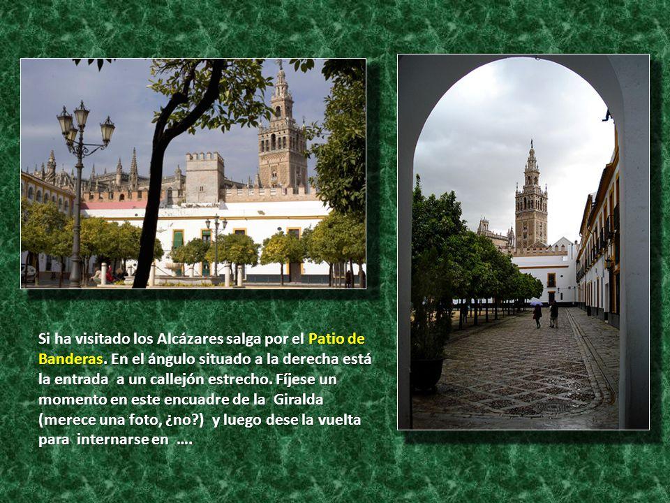 Si ha visitado los Alcázares salga por el Patio de Banderas. En el ángulo situado a la derecha está la entrada a un callejón estrecho. Fíjese un momen