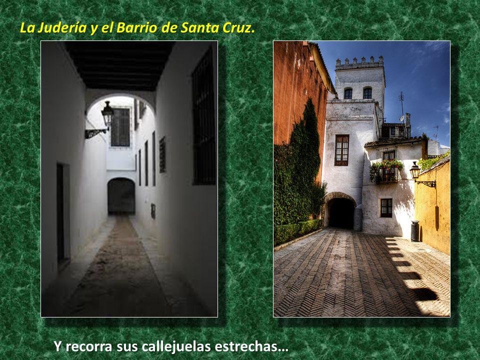 La Judería y el Barrio de Santa Cruz. Y recorra sus callejuelas estrechas…