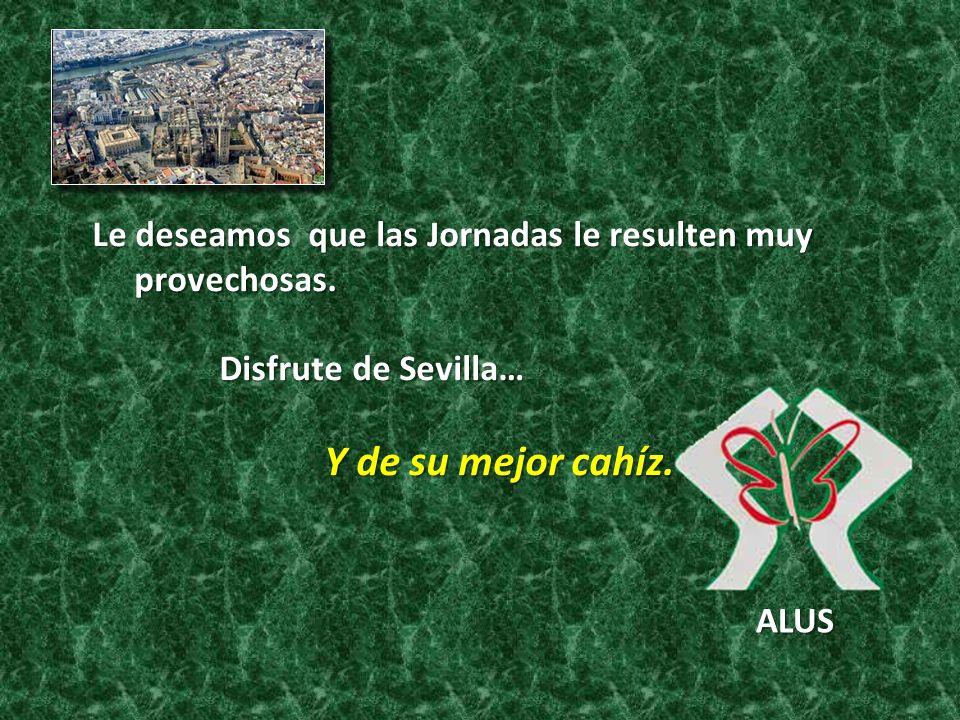 Le deseamos que las Jornadas le resulten muy provechosas. provechosas. Disfrute de Sevilla… Disfrute de Sevilla… Y de su mejor cahíz. Y de su mejor ca