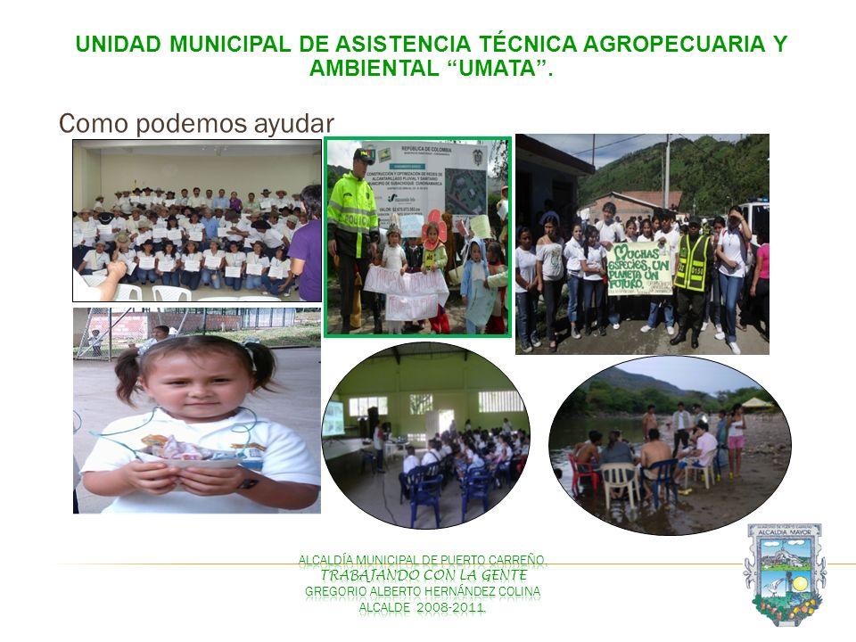 UNIDAD MUNICIPAL DE ASISTENCIA TÉCNICA AGROPECUARIA Y AMBIENTAL UMATA. Como podemos ayudar