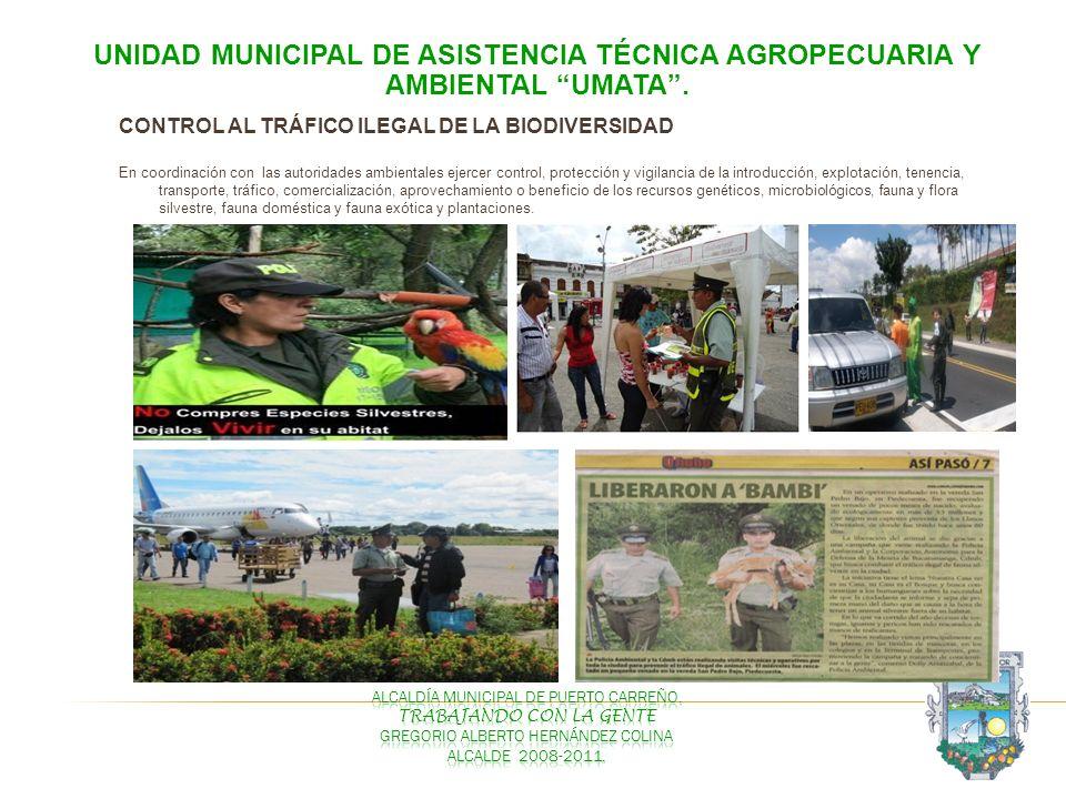 CONTROL AL TRÁFICO ILEGAL DE LA BIODIVERSIDAD En coordinación con las autoridades ambientales ejercer control, protección y vigilancia de la introducc