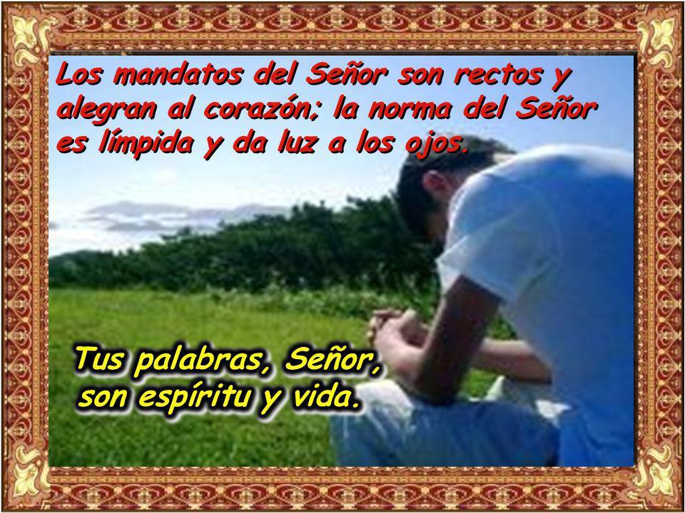 Salmo 18 La ley del Señor es perfecta; es descanso para el alma; el precepto del Señor es fiel e Instruye al ignorante.