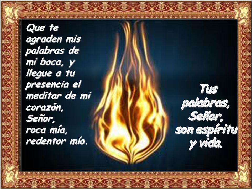Tus palabras, Señor, son espíritu y vida. La voluntad del Señor es puro y eternamente estable; los mandamientos del Señor son verdaderos y enteramente