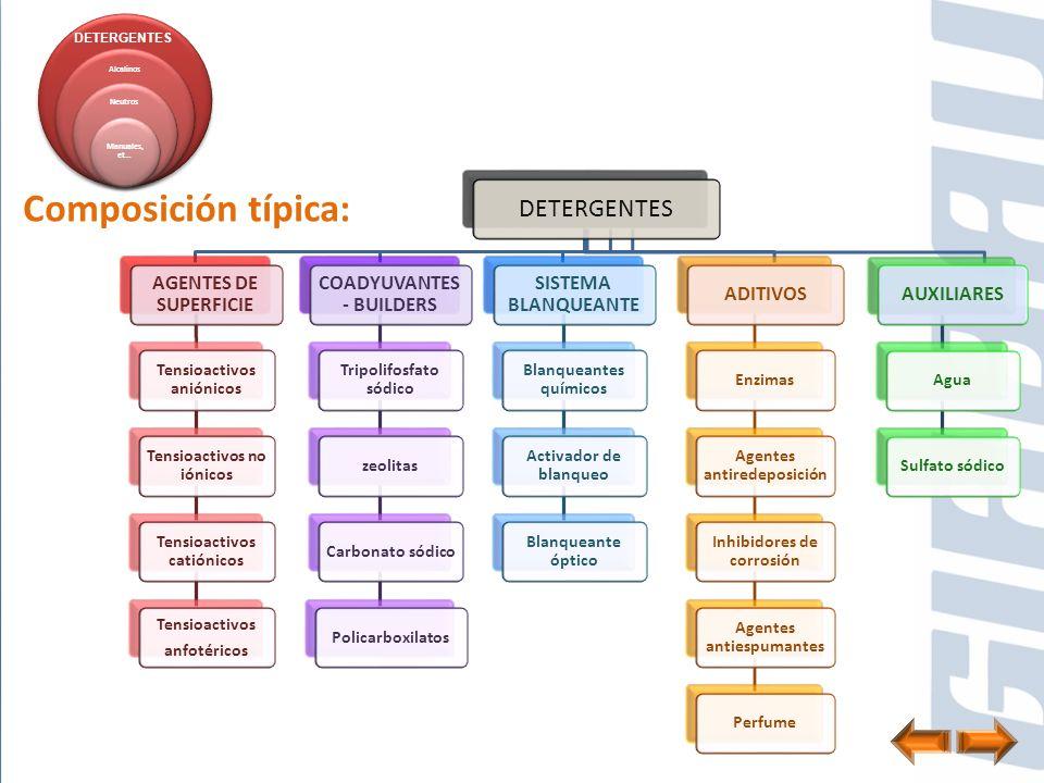 DETERGENTES AGENTES DE SUPERFICIE Tensioactivos aniónicos Tensioactivos no iónicos Tensioactivos catiónicos Tensioactivos anfotéricos COADYUVANTES - B