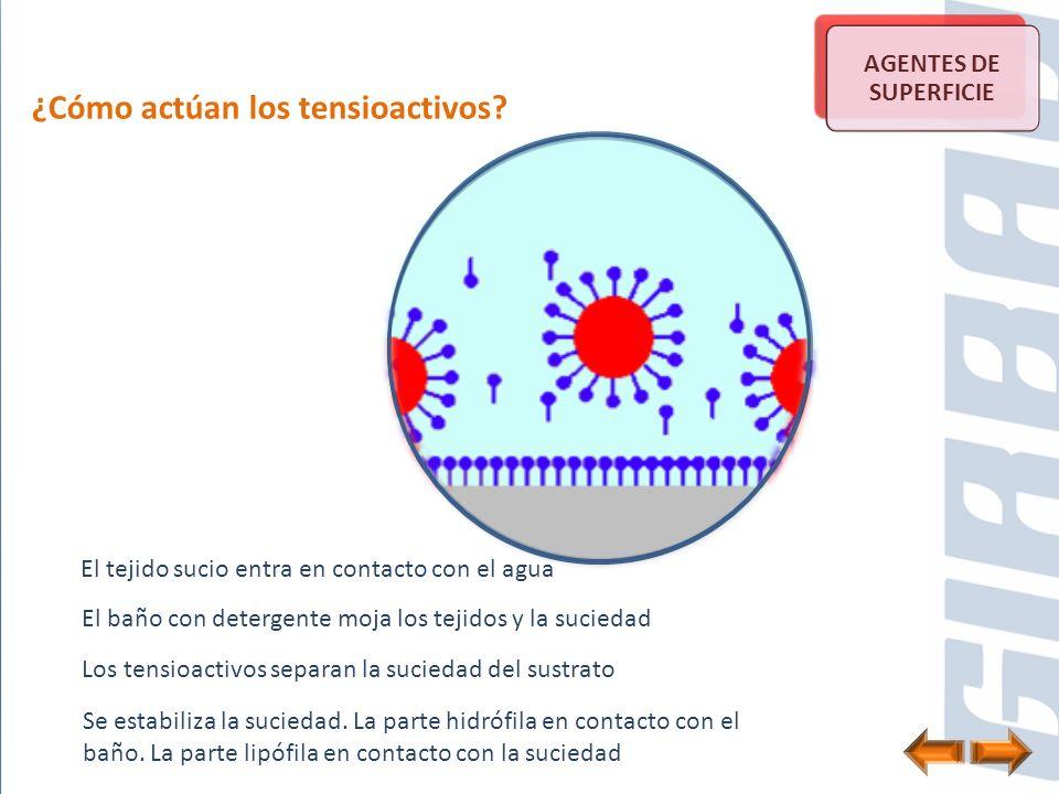 ¿Cómo actúan los tensioactivos? El tejido sucio entra en contacto con el agua AGENTES DE SUPERFICIE El baño con detergente moja los tejidos y la sucie