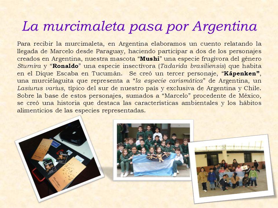 La murcimaleta pasa por Argentina Para recibir la murcimaleta, en Argentina elaboramos un cuento relatando la llegada de Marcelo desde Paraguay, hacie