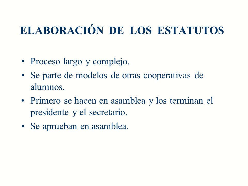 ELABORACIÓN DE LOS ESTATUTOS Proceso largo y complejo.