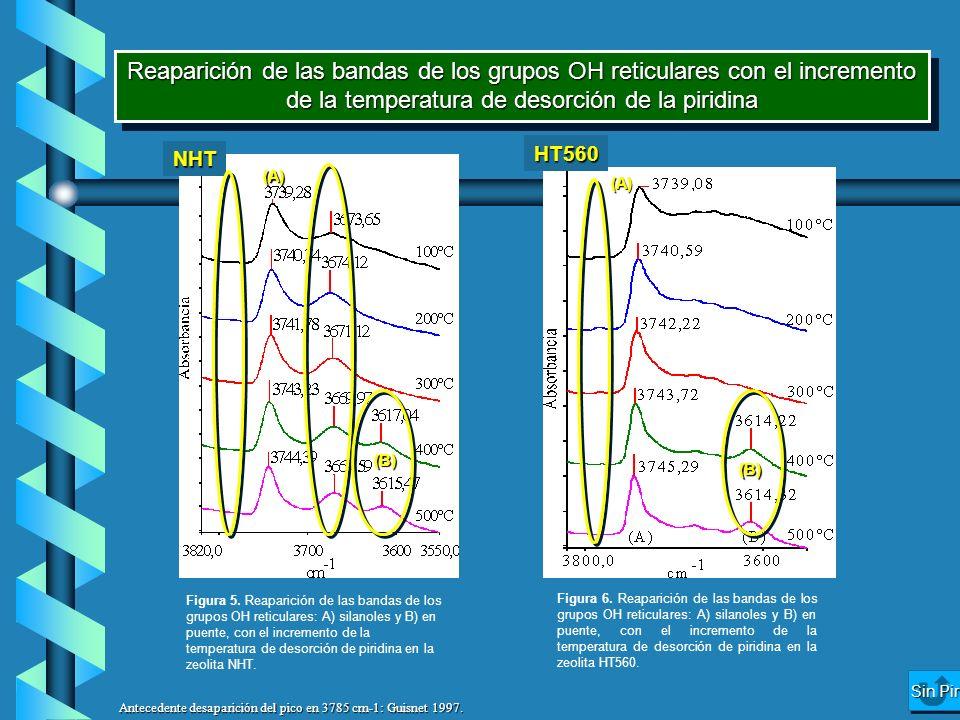 Reaparición de las bandas de los grupos OH reticulares con el incremento de la temperatura de desorción de la piridina NHT HT560 (A) (B) (A) (B) Figur