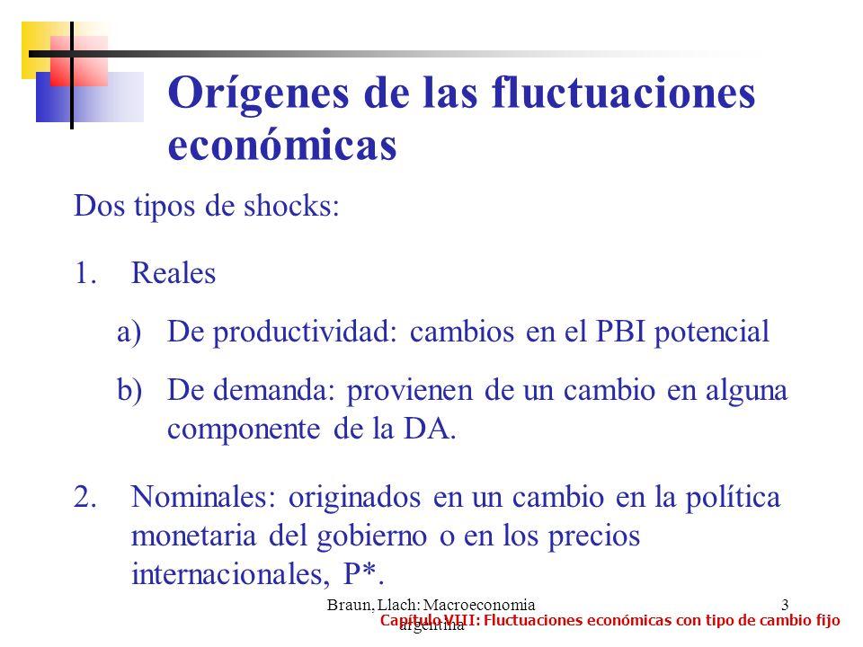 Braun, Llach: Macroeconomia argentina 3 Dos tipos de shocks: 1.Reales a)De productividad: cambios en el PBI potencial b)De demanda: provienen de un ca