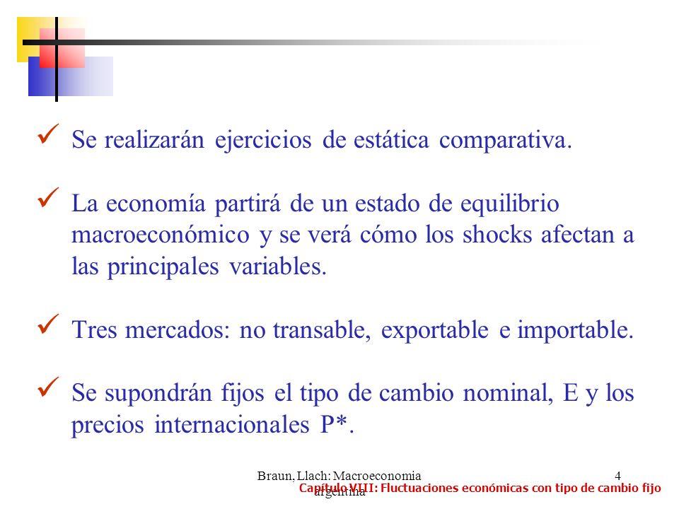 Braun, Llach: Macroeconomia argentina 5 a)Una expansión del consumo: Se supone un incremento de Y e El país se ha vuelto más rico, lo cual estimula el consumo de los tres bienes Aumentos en la demanda agregada a partir del pleno empleo Capítulo VIII: Fluctuaciones económicas con tipo de cambio fijo