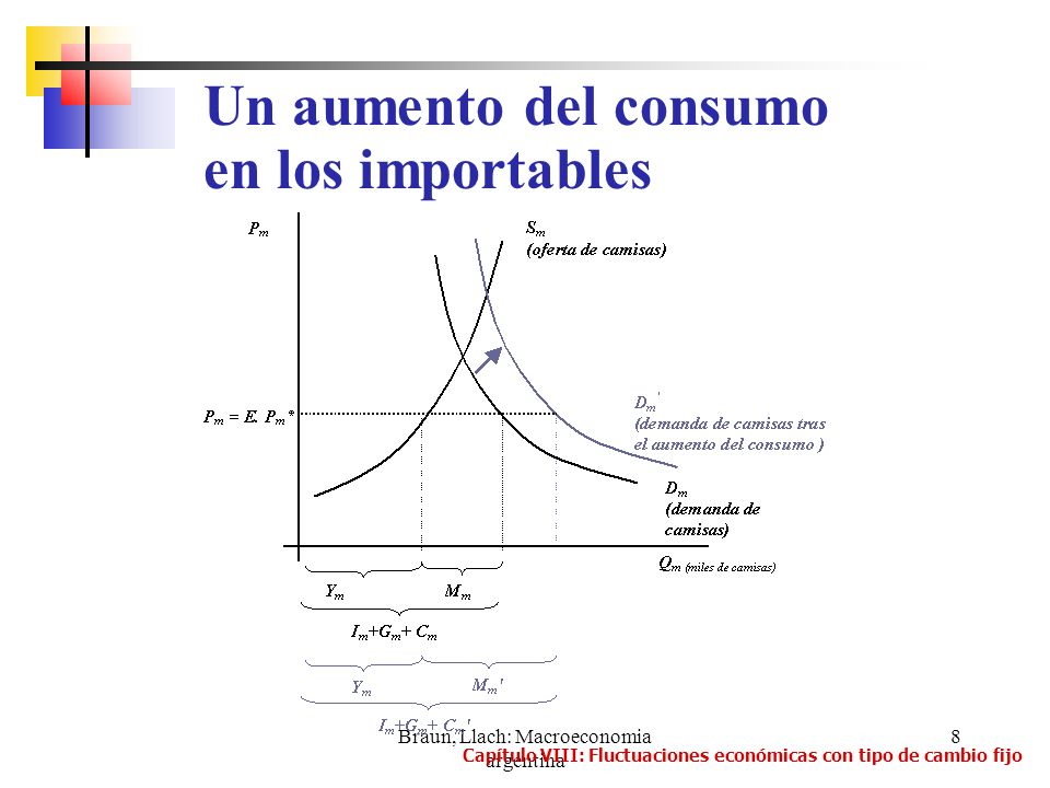Braun, Llach: Macroeconomia argentina 29 1.