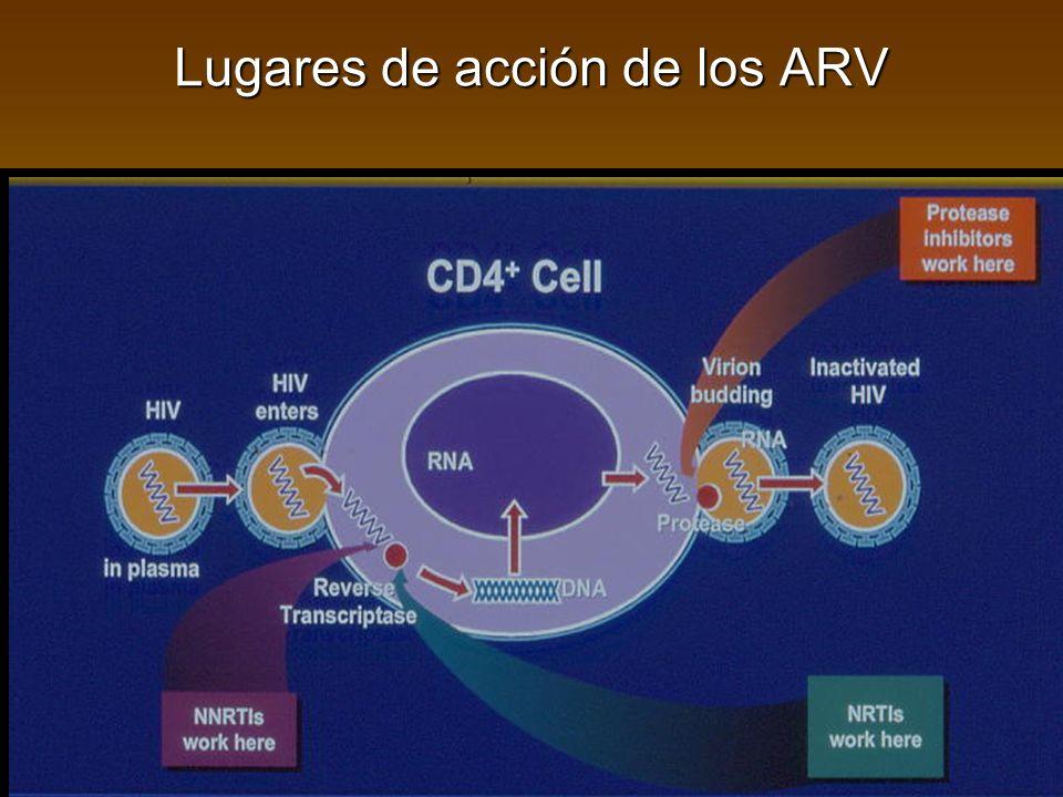 Lugares de acción de los ARV