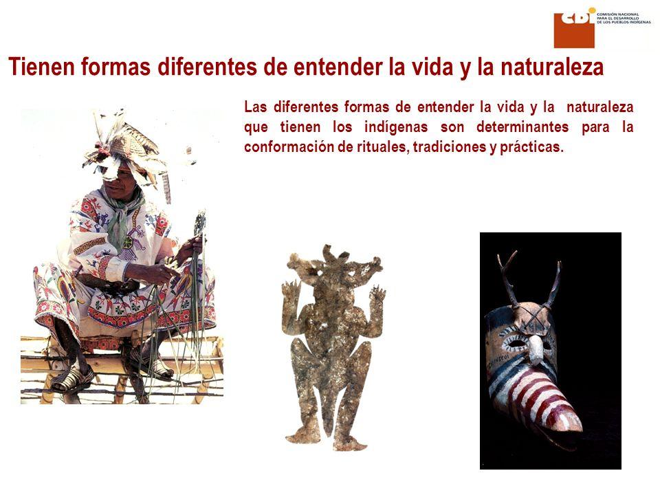 Las diferentes formas de entender la vida y la naturaleza que tienen los indígenas son determinantes para la conformación de rituales, tradiciones y p
