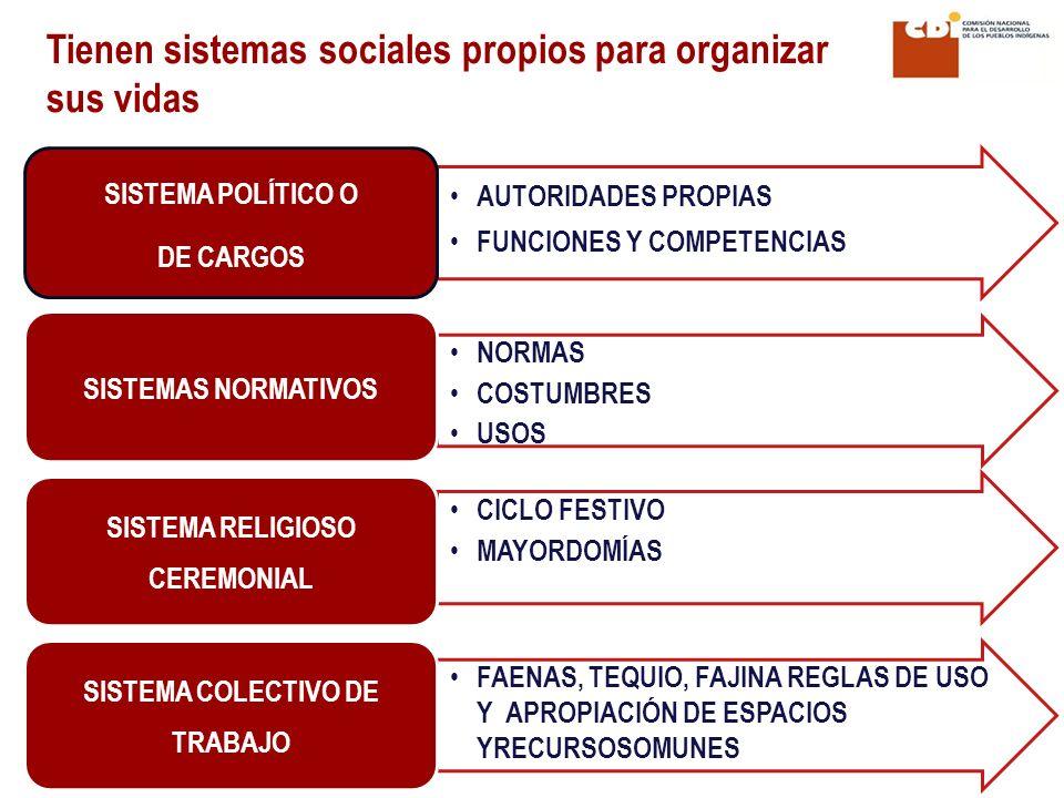 AUTORIDADES PROPIAS FUNCIONES Y COMPETENCIAS SISTEMA POLÍTICO O DE CARGOS NORMAS COSTUMBRES USOS SISTEMAS NORMATIVOS CICLO FESTIVO MAYORDOMÍAS SISTEMA RELIGIOSO CEREMONIAL FAENAS, TEQUIO, FAJINA REGLAS DE USO Y APROPIACIÓN DE ESPACIOS YRECURSOSOMUNES SISTEMA COLECTIVO DE TRABAJO Tienen sistemas sociales propios para organizar sus vidas