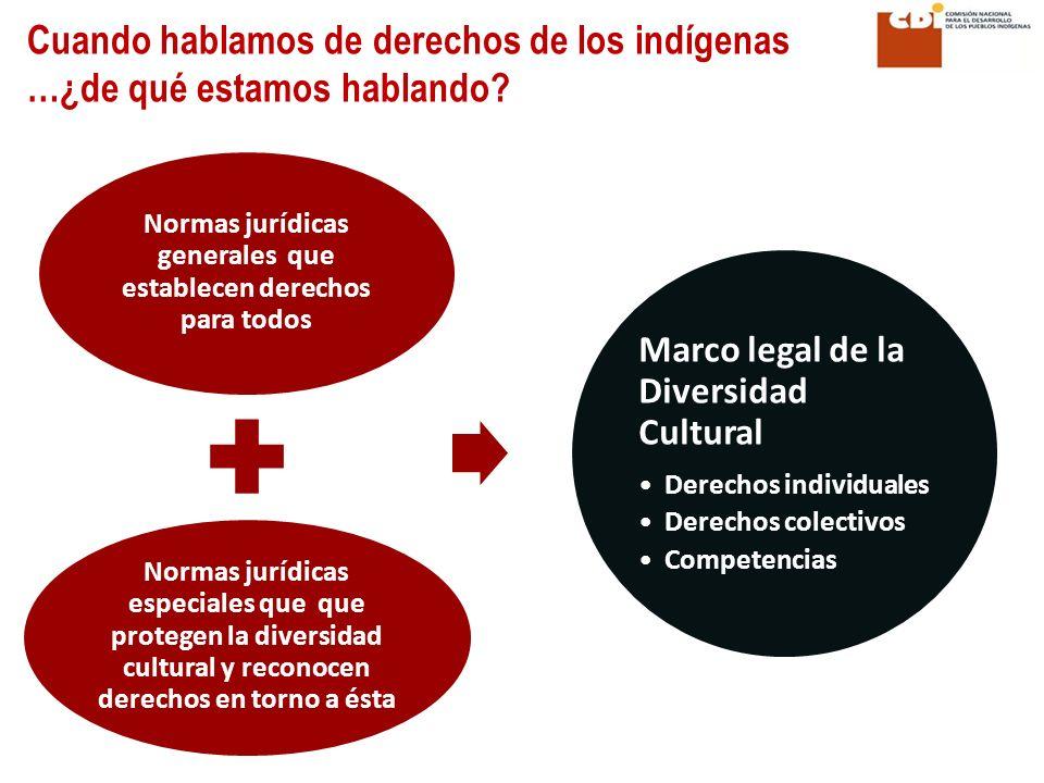 Normas jurídicas generales que establecen derechos para todos Normas jurídicas especiales que que protegen la diversidad cultural y reconocen derechos